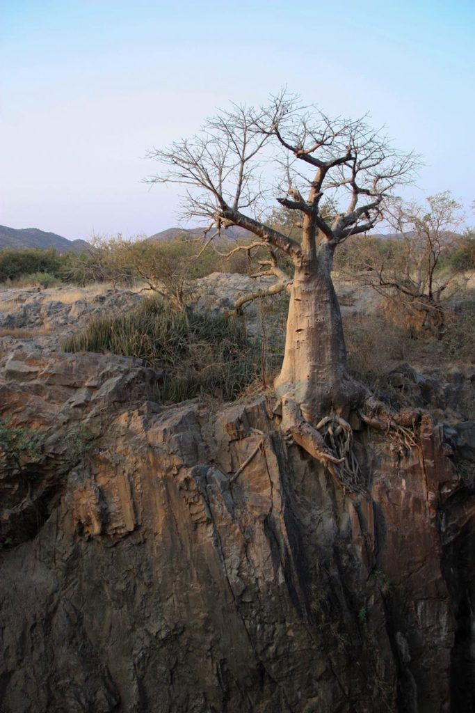 gallery-namibia (50)