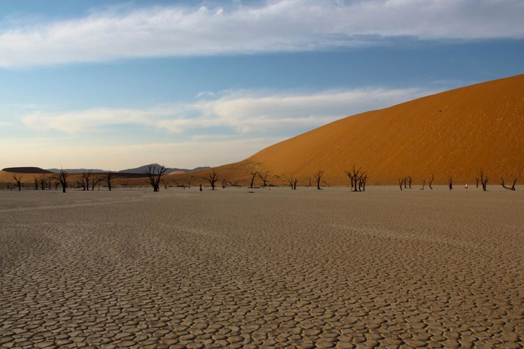 gallery-namibia (74)