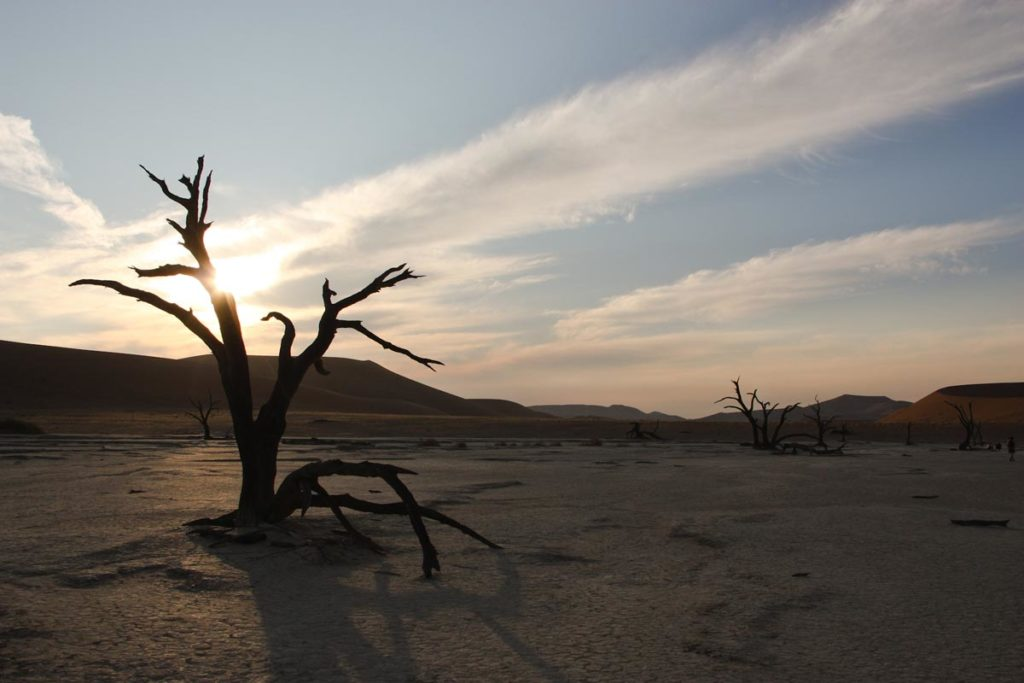 gallery-namibia (76)