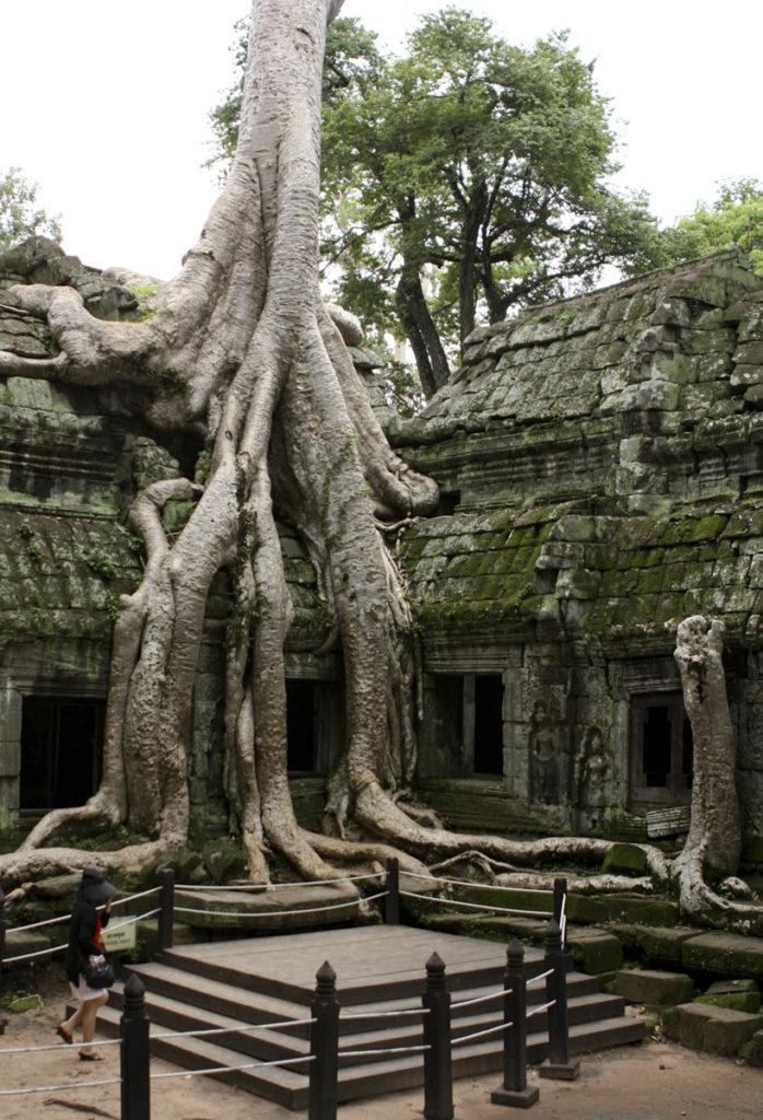 gallery-cambogia (26)