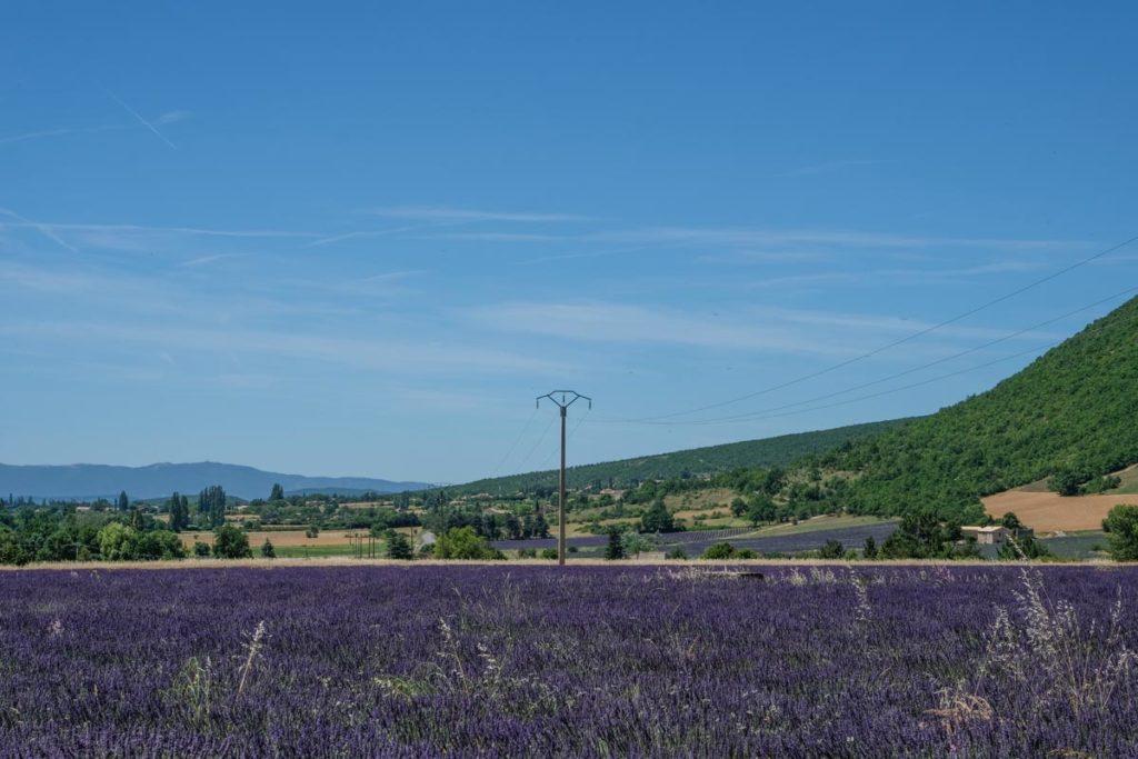 gallery-la-lavanda (32)
